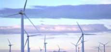 wind_farm-1